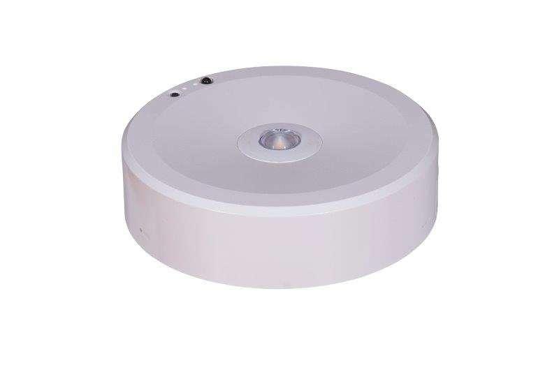 FXSD Surface Downlight